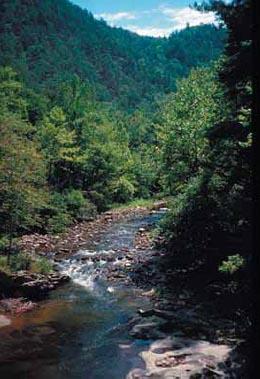 アパラチア山脈の美しい自然(写真提供 米国地質調査所)