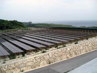 沖縄電力の宮古島メガソーラ実証研究設備に電力を供給するための太陽光パネルが、見渡すかぎり続いている。タスクフォースのメンバーは3月24日にこの施設を訪問した(写真提供 在沖縄米国総領事館)
