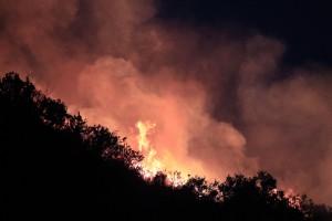 気候変動の結果、悪化が予想される森林火災。写真は3月にチリで発生した森林火災 (© AP Images)