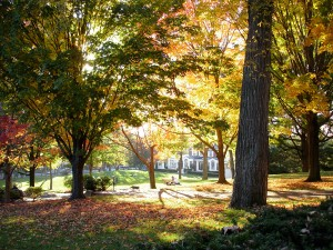 President's Lawn, Tufts University Campus in Fall, Medford, MA