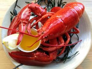 おいしそうにゆであがったロブスター(by Legal Seafoods、マサチューセッツ州政府観光局)