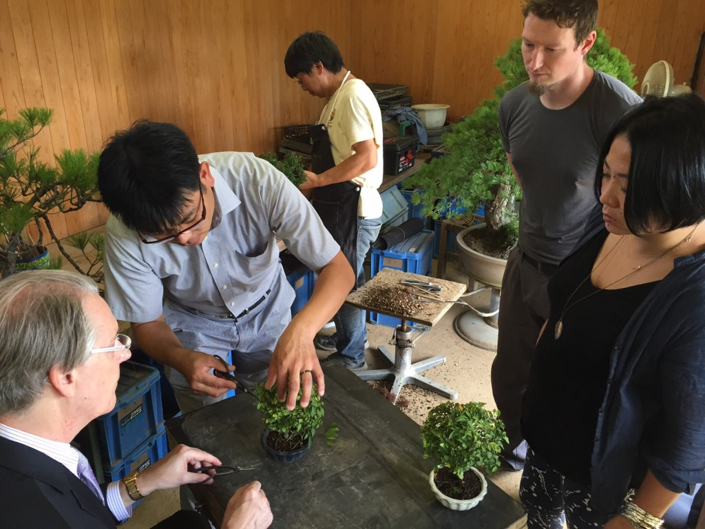 Learning how to cultivate bonsai at Mansei-en in Saitama.