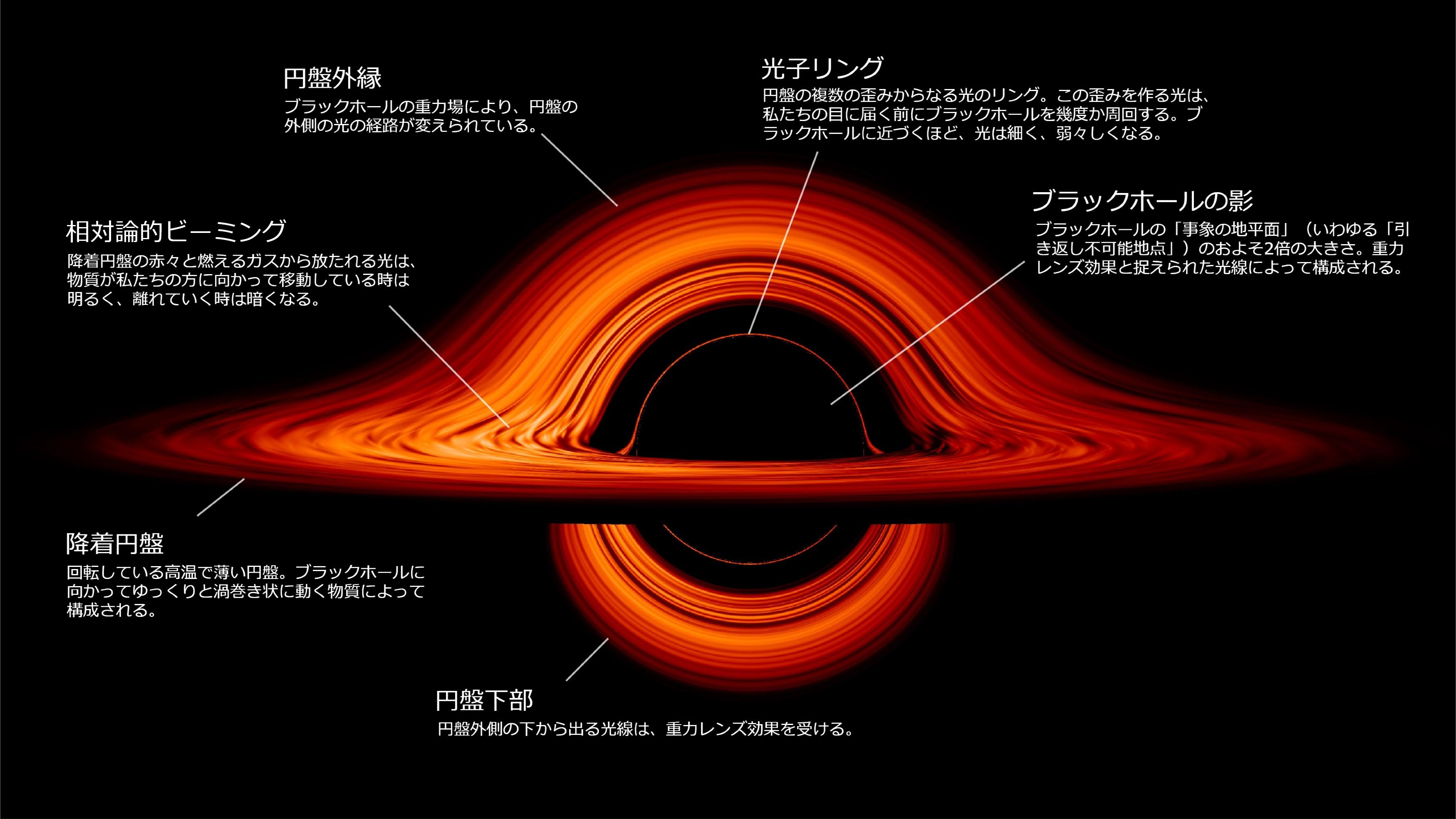 ブラックホールの構造。クリックで拡大(画像提供:NASAゴダード宇宙飛行センター/ジェレミー・シュニットマン)