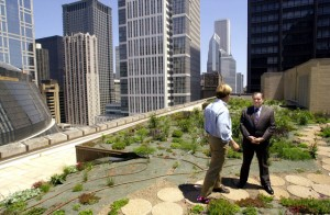 Chicago Mayor Richard M. Daley, left, talks with P. Allen Smith, host of a television garden show, about the roof-top garden on Chicago's City Hall, Friday, June 08, 2001. The rooftop is part of a pilot program aimed at reducing the city's temperature. (AP Photo/Stephen J. Carrera)